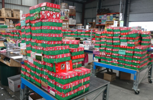 OCC shoebox checking pod